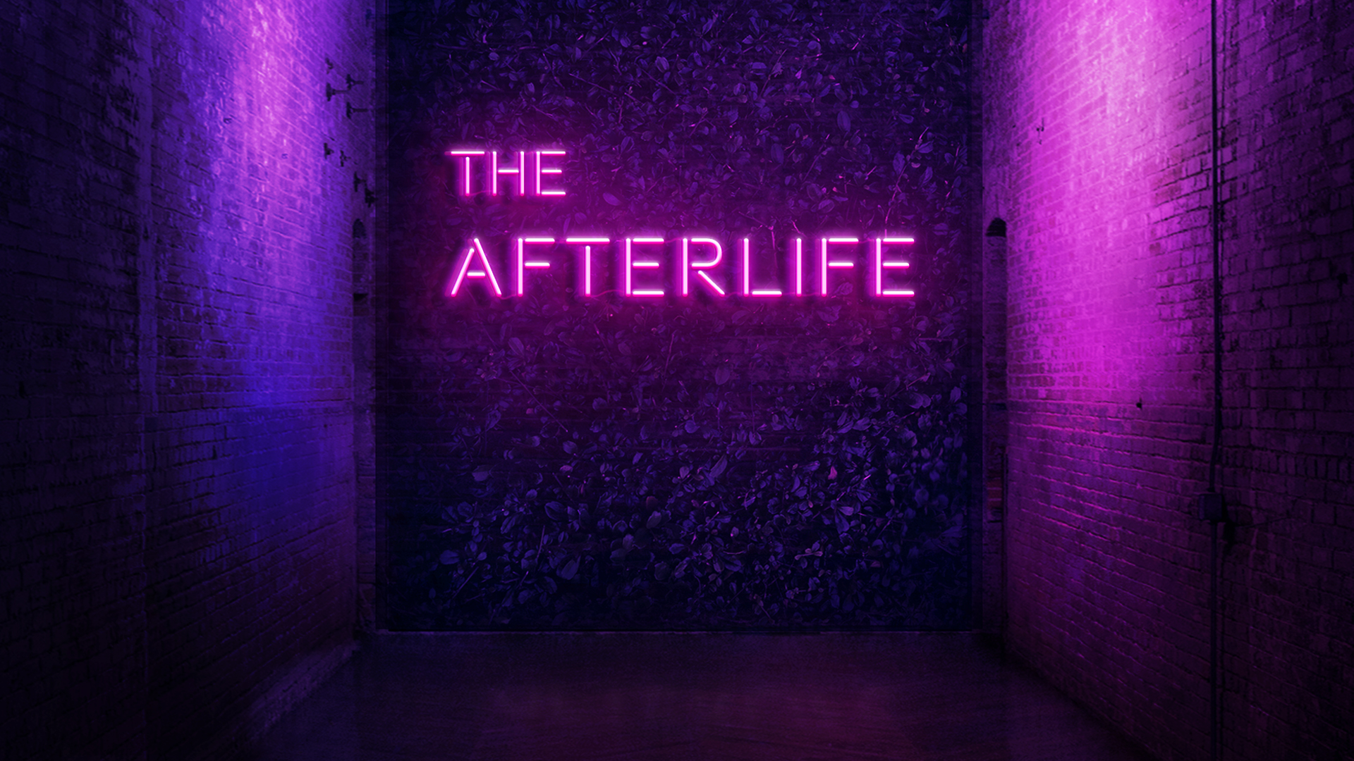 Afterlife webmedia 1920x1080
