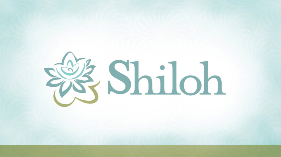 Spring 2019 Shiloh Couples Panel Night