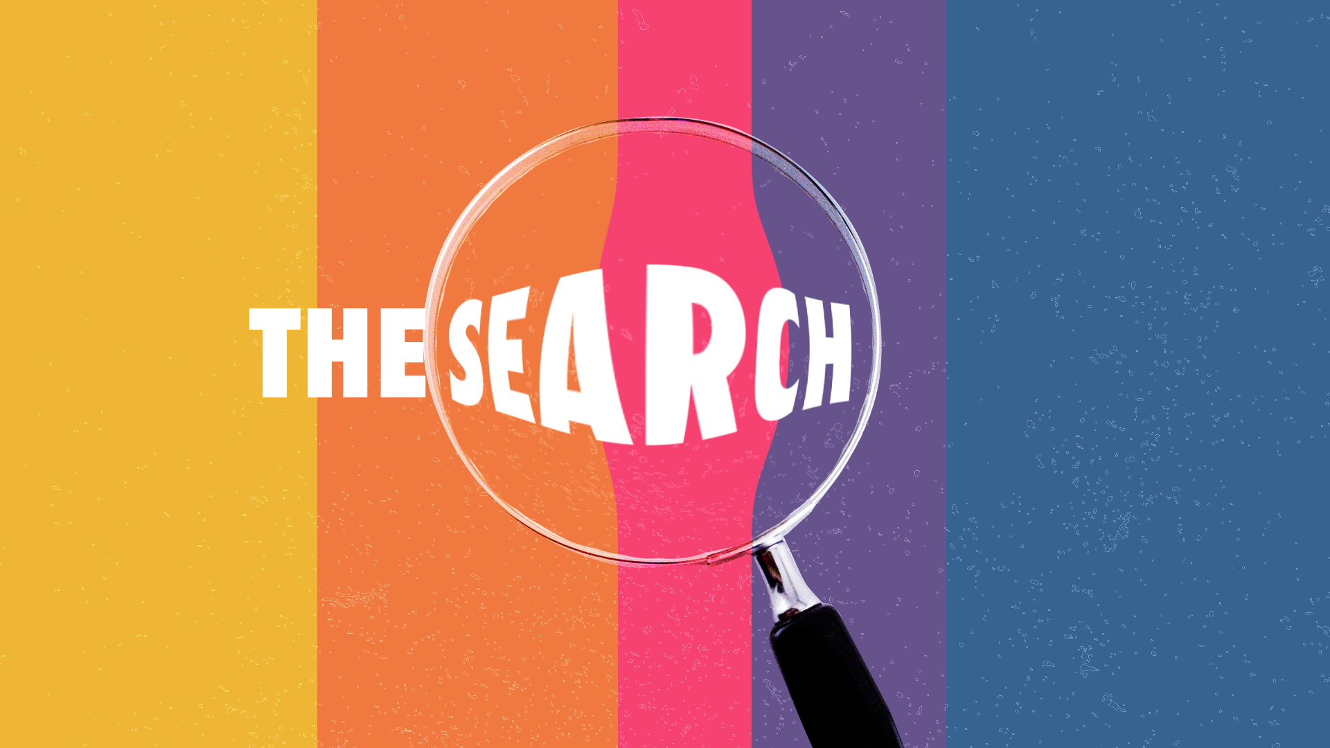 The Search: Searching for Love