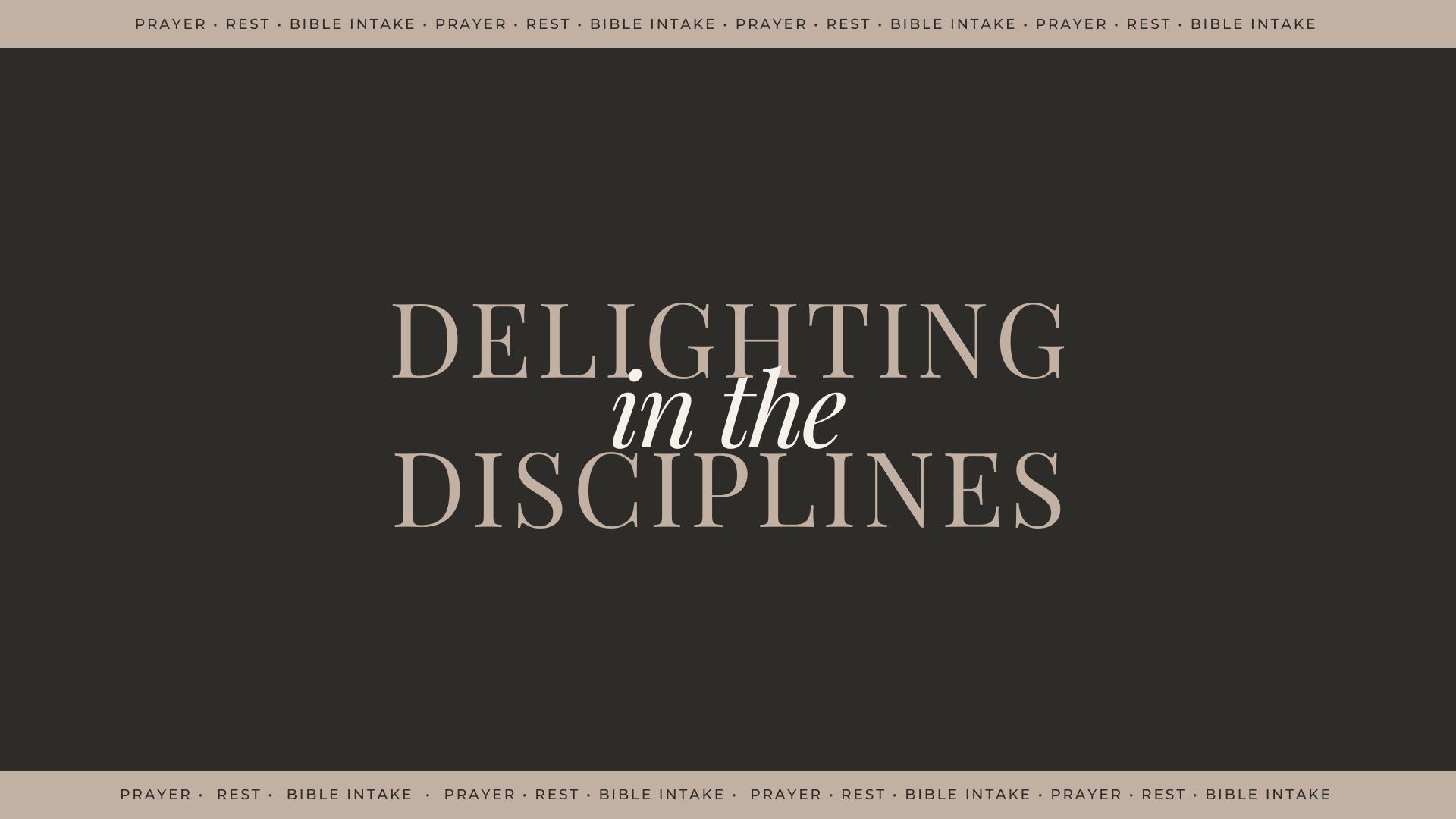 Delighting in the Disciplines - Bible Intake