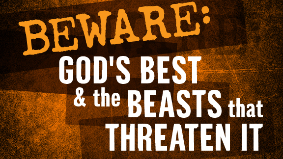 Don't Be a Wildebeest: Get in the Word